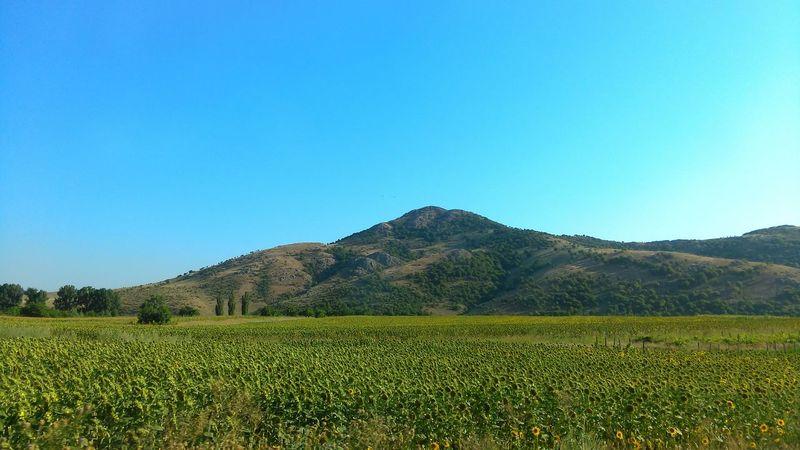 Izvoarele village, Tulcea, Romania. HTC_photography Driving Around The World Nature Summer Landscape Nature On Your Doorstep