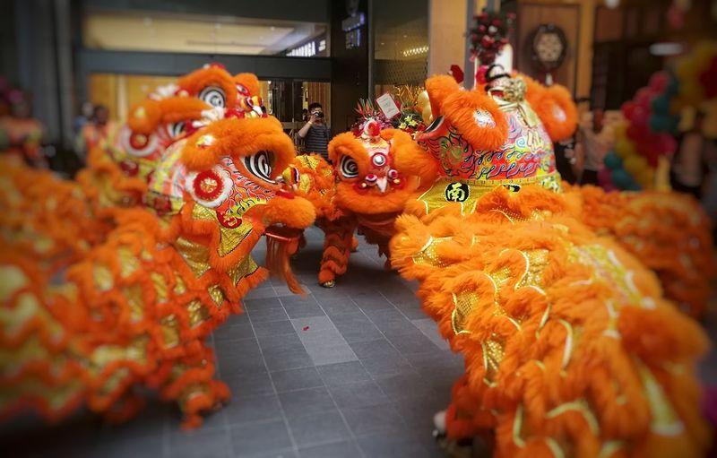 Lion dancing...