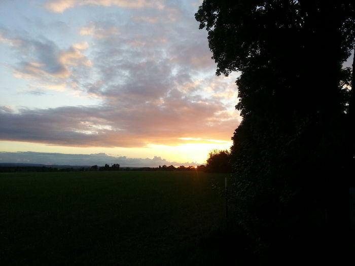 Sunset watch it