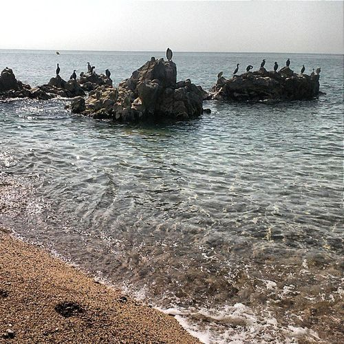 SantPol Maresme Estiu Vacances beach