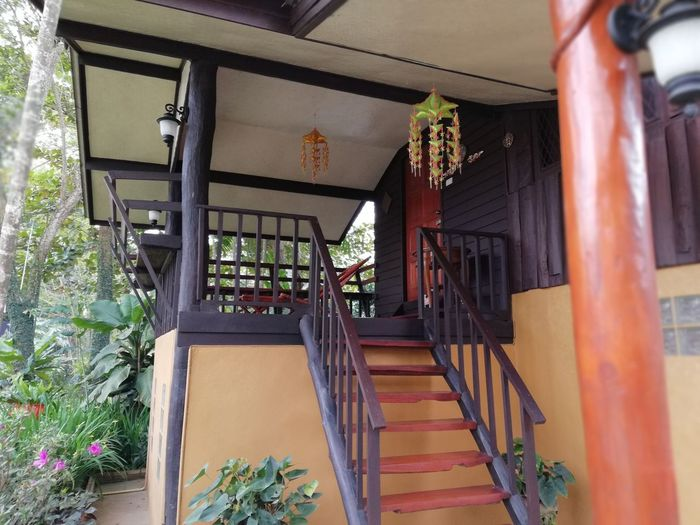 Thailand Plant Plants Chiang Mai | Thailand #Chiang Mai Buildings Architecture Countryside Steps And Staircases Staircase Steps House Architecture Built Structure Entryway Entrance Front Door