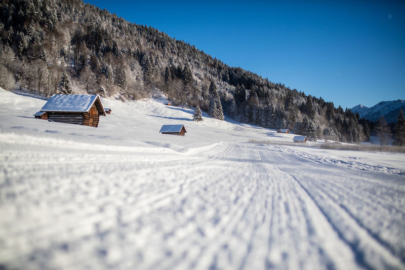 A cross-country skiing trail in the baverian alps, Germany. Bavaria Clear Sky Cross-Country Skiing Fun Low Angle View Trees Winter Wintertime Activity Alps Bavarian Alps Beauty In Nature Cabins  Day Daylight Langlauf Loipe Mountain Outdoors Skiing Track Snow Sports Sun Trail Tranquil Scene