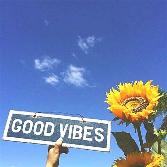 Goodvibes Peace Peaceforworld Love ♥