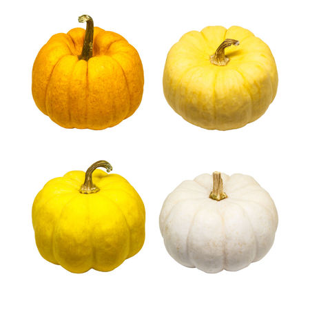 Set of colorful pumpkin isolated on white background from top view with clipping path. Clipping Halloween Holiday Isolated Objects Path Trick Or Treat Clipping Path Colorful Isolated White Background Pumpkin Vegetable