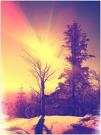 Sun Landscape Winter