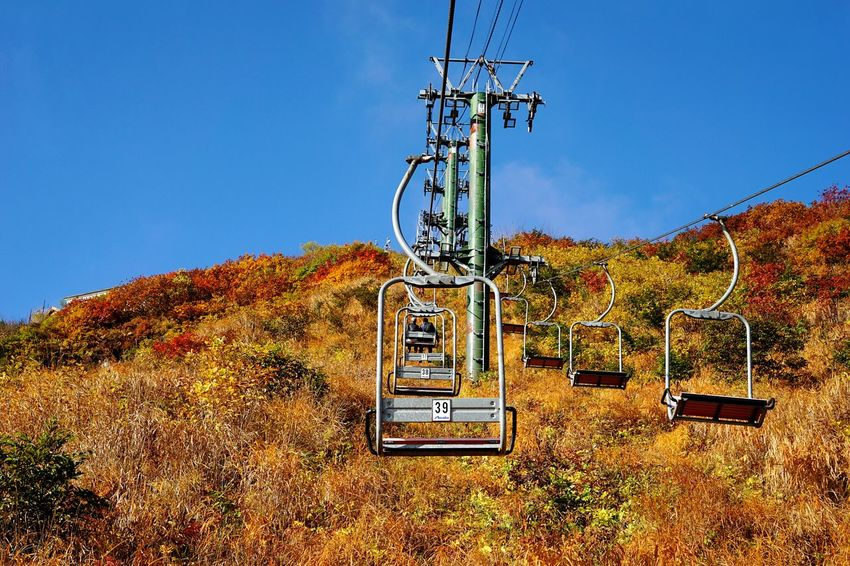 No People Outdoors Day Sky Cable Ski Lift Gondola Tree Nature Autumn Leaves Mountain Scenics Beauty In Nature