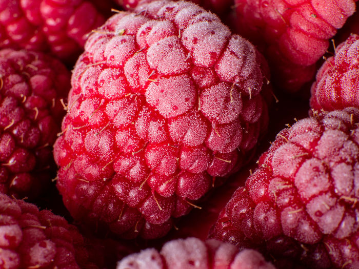 Healthy breakfast: Close up of frozen raspberries, macro shot, top view, vibrant colors Food And Drink Healthy Eating Berry Fruit Food Wellbeing Red Raspberry Fruit No People Freshness Still Life Close-up Full Frame Backgrounds Large Group Of Objects Indoors  Abundance Ripe Frozen Breakfast Antioxidant Antioxidant Food