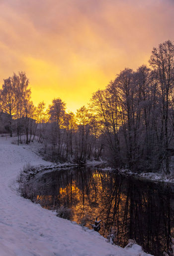 Inner Power Beauty In Nature Cloud - Sky Cold Cold Temperature Land Nature No People Non-urban Scene Orange Color Outdoors Plant Scenics - Nature Sky Snow Sunset Tranquil Scene Tranquility Tree Water Winter