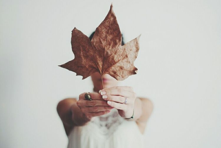 leaf. The Portraitist - 2016 EyeEm Awards Human Body Part Faceless Portrait Self Portrait White Album Selective Focus Hands Portrait Of A Woman Portrait Light And Shadow Minimal White Background Conceptual Focus Object