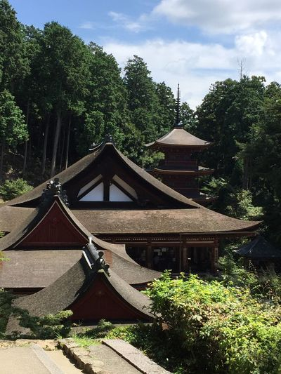 Japanese Temple Architecture Sky Day Built Structure No People Growth