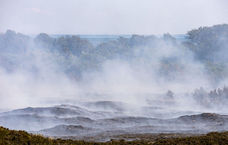 Abbrand alter und trockener Pflanzen am Morsum Kliff After The Fire Deutschland Morsum-Kliff Smoke Sylt, Germany Heather Heather Burning Heide Heide Abbrand Landscape Layers Of Smoke Morsum Nature No People Non-urban Scene Outdoors Scenics - Nature Sylt