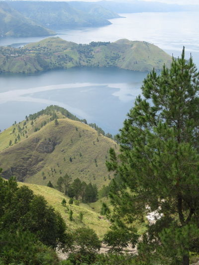 Lake Toba from above View From Above View Lake Toba Lake Toba From Above Lake Medan Indonesia Medan Naturelovers Nature_collection Beautiful Nature Beauty Outdoors Idyllic High Angle View Sky Non-urban Scene No People Growth Nature Day Environment Green Color Landscape Tree Water Tranquility Mountain Tranquil Scene Scenics - Nature Plant Beauty In Nature