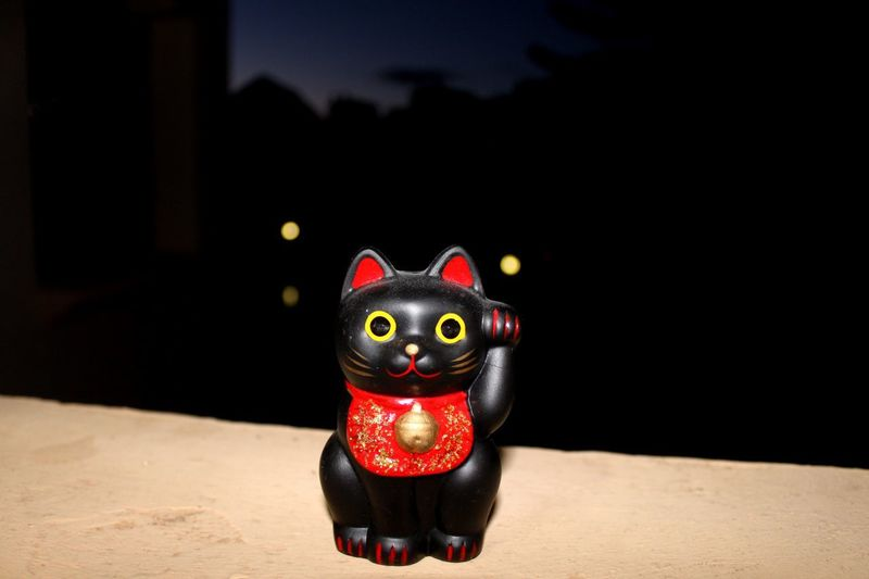 Japanise Charm Lucky Cat Cat No People Close-up Day Indoors  Animal Themes