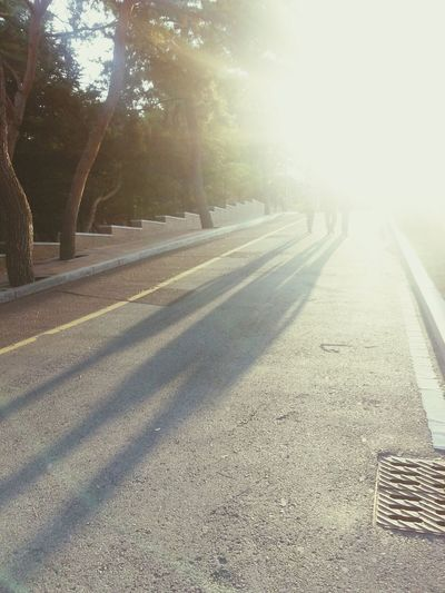 계명대 영암관 후문쪽 길. 날 좋은 날 걷기 좋은 날.