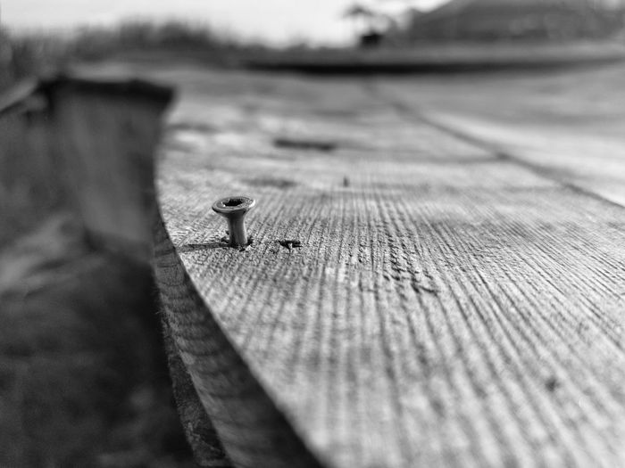 High angle view of lizard on wooden table