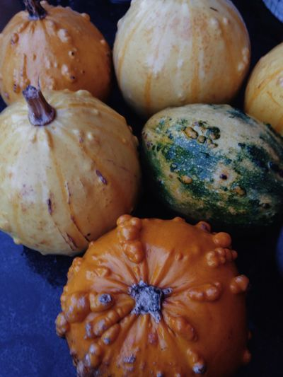 Vscocam Pumpkin