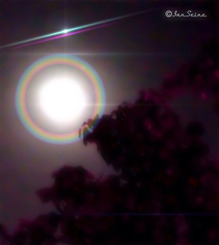 I was walking at 3:30AM PST; it is foggy out and the moon was huge. This picture was taken with my iPhone5 HDR Camera. Only exposure settings have been altered. Moon Foggy Morning Eye4photography  EyeEm Nature Lover