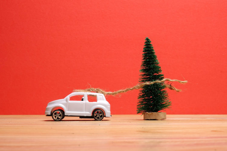 View of christmas tree