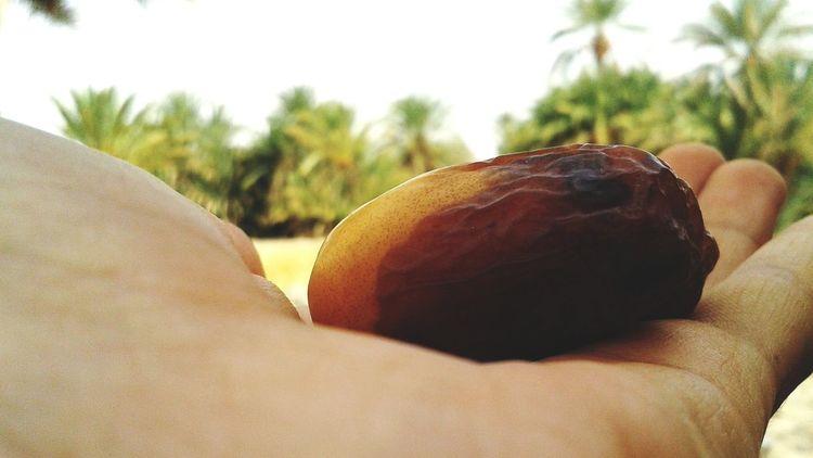 Holiday Merzouga Erfoud Rissani Desert Life Sahara South Morocco That's Me