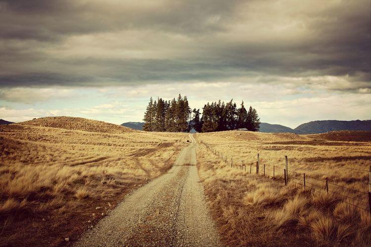 NZ Travel Dp1m