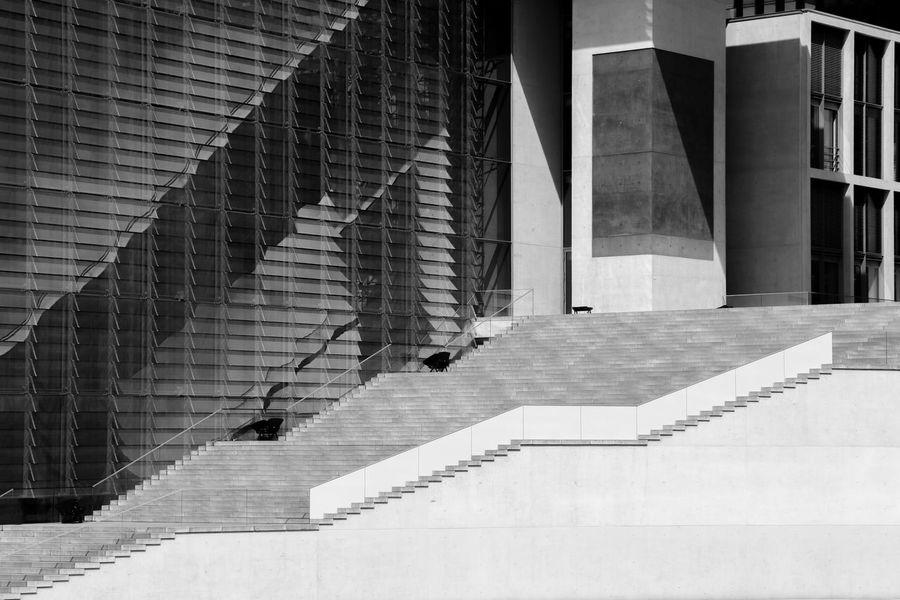 Architecture B&W Magic B&w Street Photography Black And White Blackandwhite Building Building Exterior Built Structure City Day Eye4photography  EyeEm Gallery No People Outdoors Reflection Staircase Steps Steps And Staircases The Way Forward Window #FREIHEITBERLIN