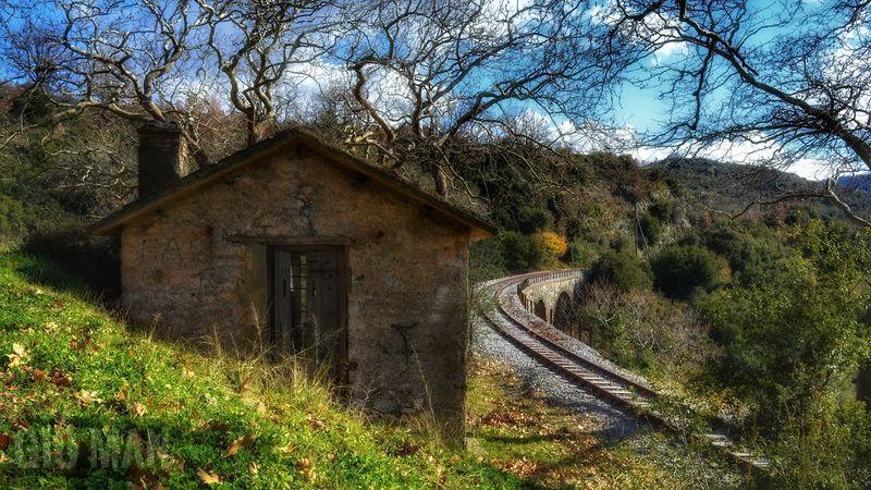 Nature Bridge Landscape Rail Railroad Tree