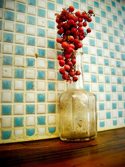 Blue Bottle Day Indoors  No People Old Plant Red Color Table Tailing Tile Tiled Wall White Color