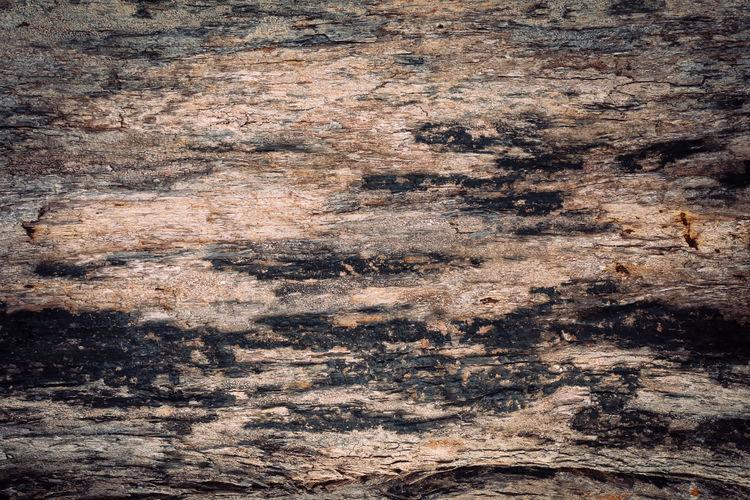 Detail shot of rock