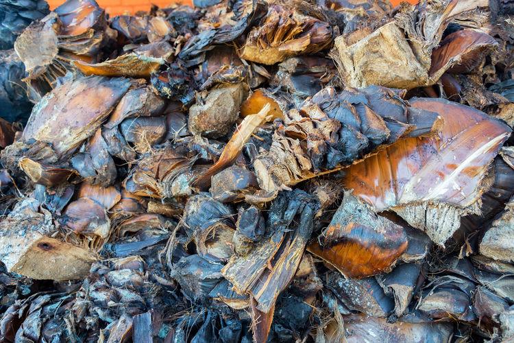 Full Frame Shot Of Dried Wood
