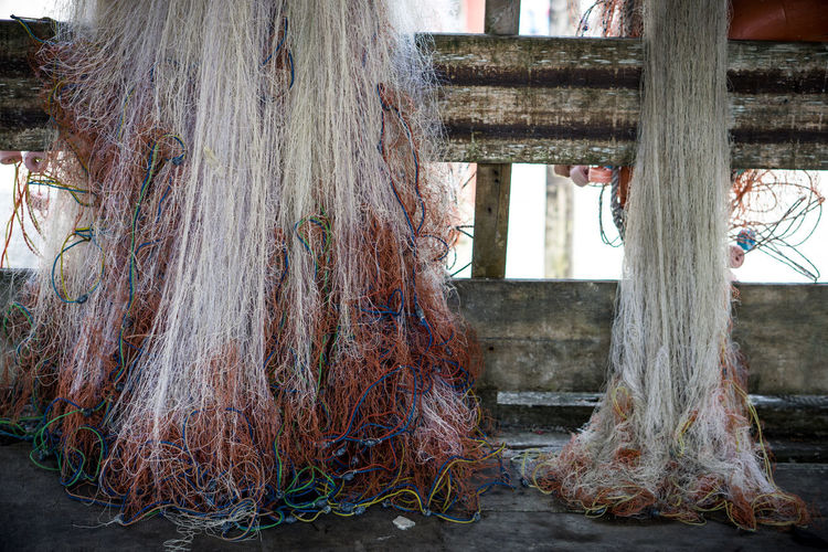 Close-up of fishing net hanging on tree trunk