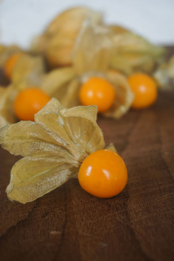 physalis fruit Physalis Physalis Fruit Physalis Peruviana Yellow Yellow Color Food Foodphotography Fruit Fresh Close-up Blood Orange Fruit Citrus Fruit Pumpkin Winter Orange Color Orange - Fruit Close-up Food And Drink Tropical Fruit Vitamin C Juicy Peel Sour Taste Lychee Ripe