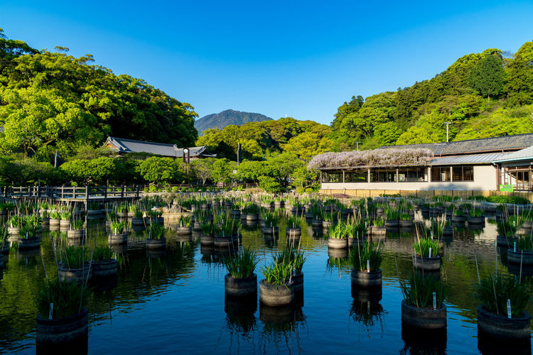 Japan Shine Architecture Beauty In Nature Building Exterior Built Structure Clear Sky Day Green Color Growth Lake Mountain Nature No People Outdoors Plant Reflection Scenics Sky Tranquil Scene Tranquility Tree Water Waterfront