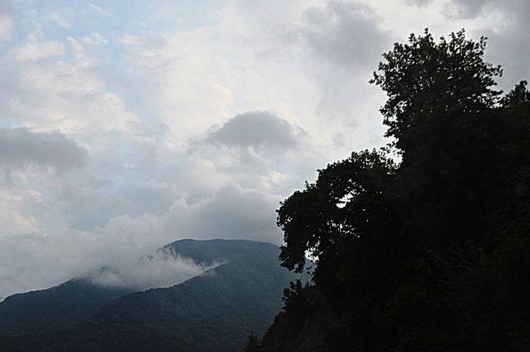 Mountains Clouds And Sky Mountain View Mountaineering Mountain Road Turkey Pamukova Roadside Flou Shades Of Grey Ağaçlarınarası Dağ Bulut☁ Bulutlar ☁ Gölgelerin Gücü Adına Gölgekoleksiyonu öfke AfraidofHeights