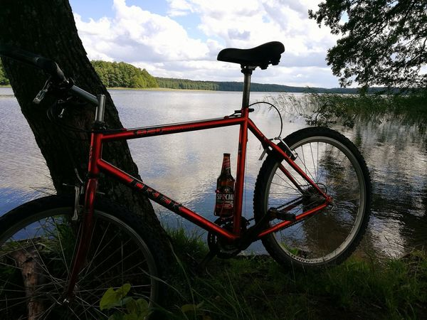 Bicycle Nature No People Tree Area Serwent Specjal Giławy Beer O'clock