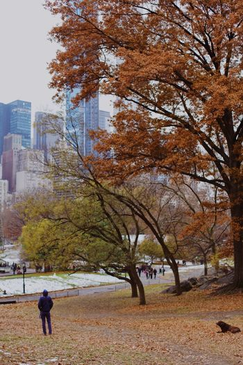Man walking in park during autumn