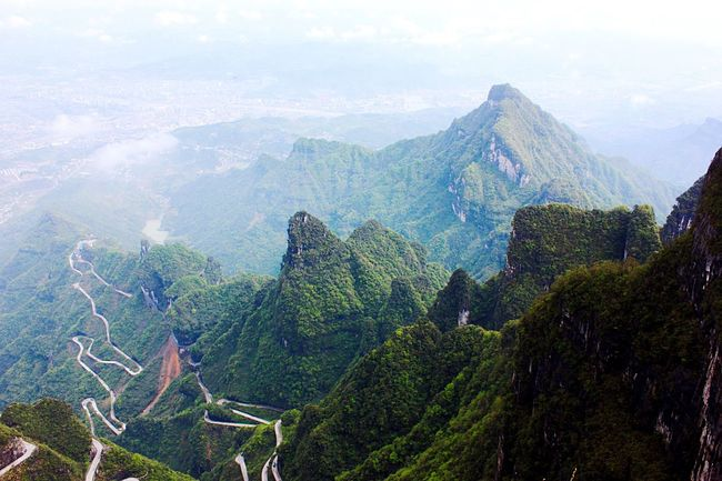 A Bird's Eye View Mountain Scenics Tree Tranquil Scene Beauty In Nature Mountain Range Tranquility Idyllic Environment Physical Geography Valley Majestic Day Growth Roads Mountain Roads Top Of The Mountain View From Above Zhangjiajie National Park China Travel Landmark My Favorite Place