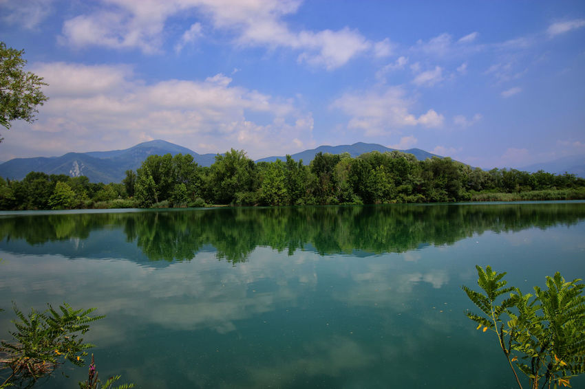 Paesaggi_ditalia Torbiere Torbieredelsebino Cielo Nature Water Riflessosullacqua Greeen Landscape_photography Beauty In Nature Paesaggio Landcsape No People Cielo Blu Blue Sky