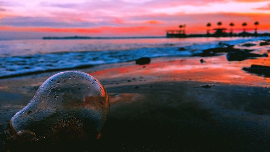 Damaged bulb at beach against sky during sunset