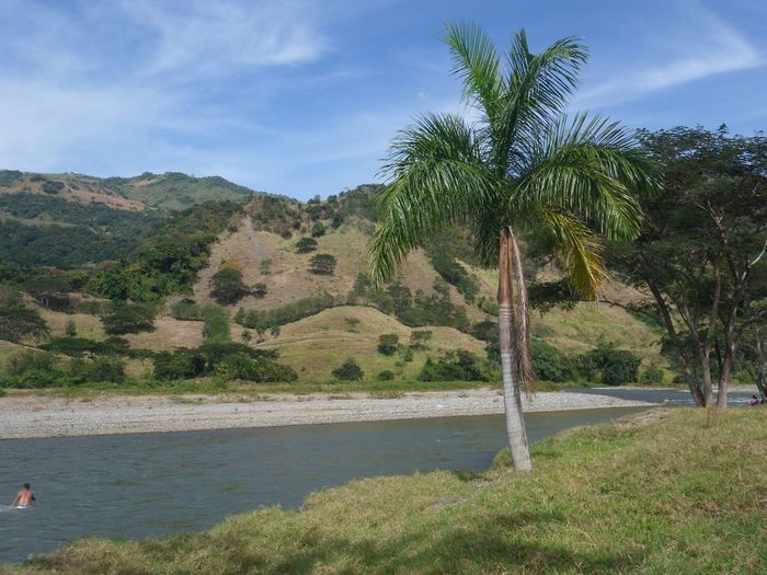 Rio arma, Antioquia Nature Cordillera De Los Andes Sky Colombia ♥  Mountains Taking Photos Paisajes Antioquia Palm Trees River