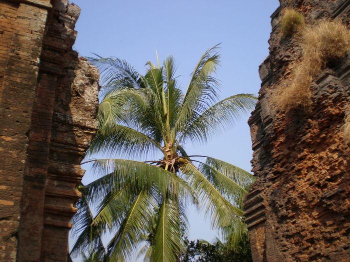 Siem Reap,