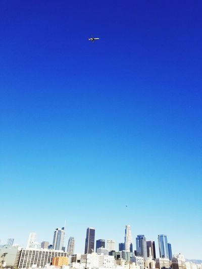 fly high 2018 In One Photograph City Urban Skyline Cityscape Clear Sky Skyscraper Modern Sky Architecture Building Exterior Amusement Park Ride Ferris Wheel Amusement Park Chain Swing Ride Rollercoaster Big Wheel Traveling Carnival Carousel Horses Coney Island