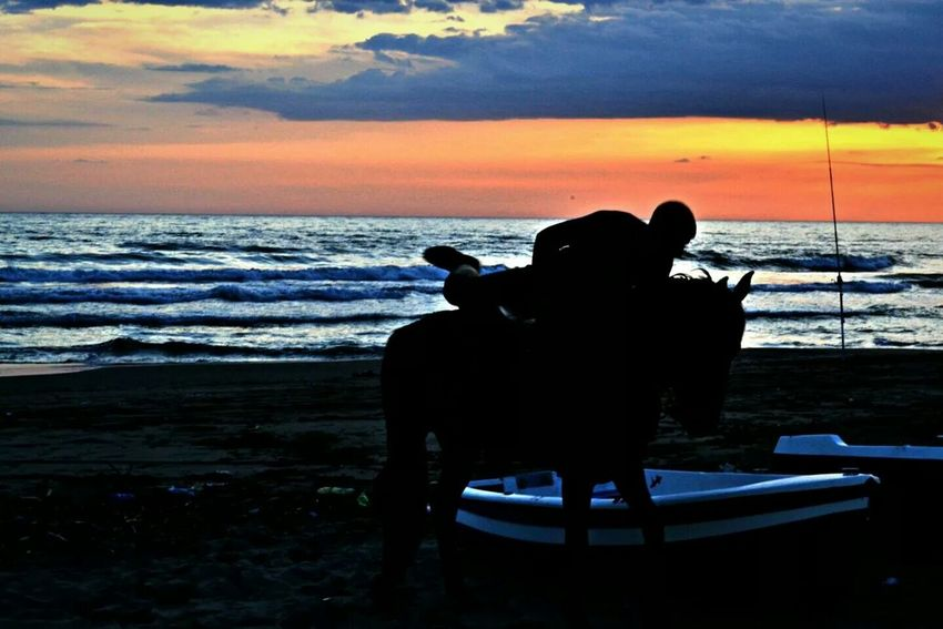 Sunset Silhouettes Seaside Beach Mondragone Lost In The Sunset Keep Calm And Snap On Horse Sea Italy Enjoying Life