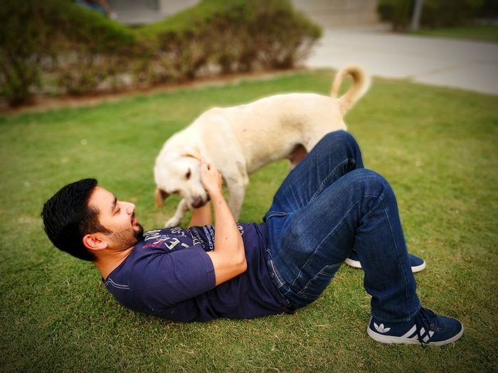 Man with dog lying on grass