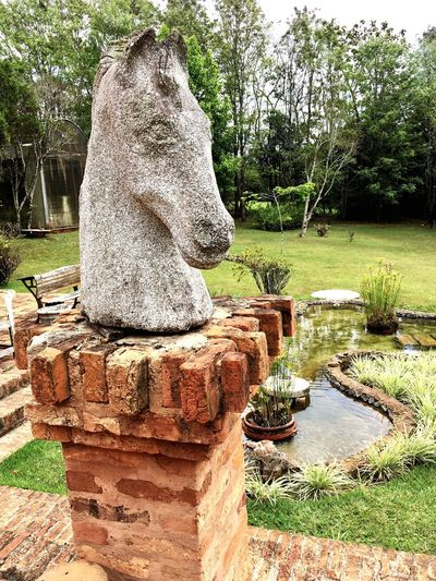 Formal Garden Garden Monument Horsepower Horselovers Horse Head