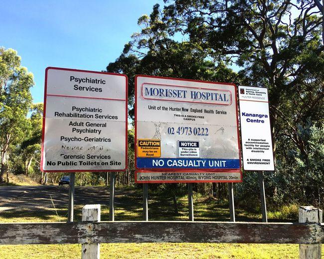 A kangaroo park + an abandoned psychiatric hospital = perfection. Abandoned Psychiatric Hospital Kangaroo Park