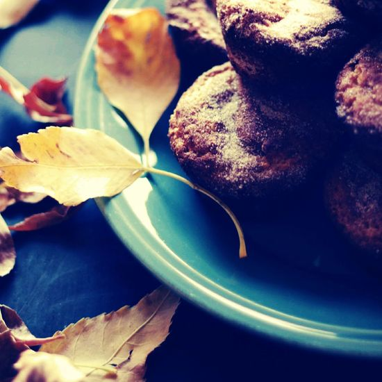 Comfort food:) Relaxing Cozy Ready-to-eat Fall Beauty Day Muffin Foodphotography Comfortfood Leaf Close-up Freshness Flower Leaves Nature Beauty In Nature No People Fragility Botany