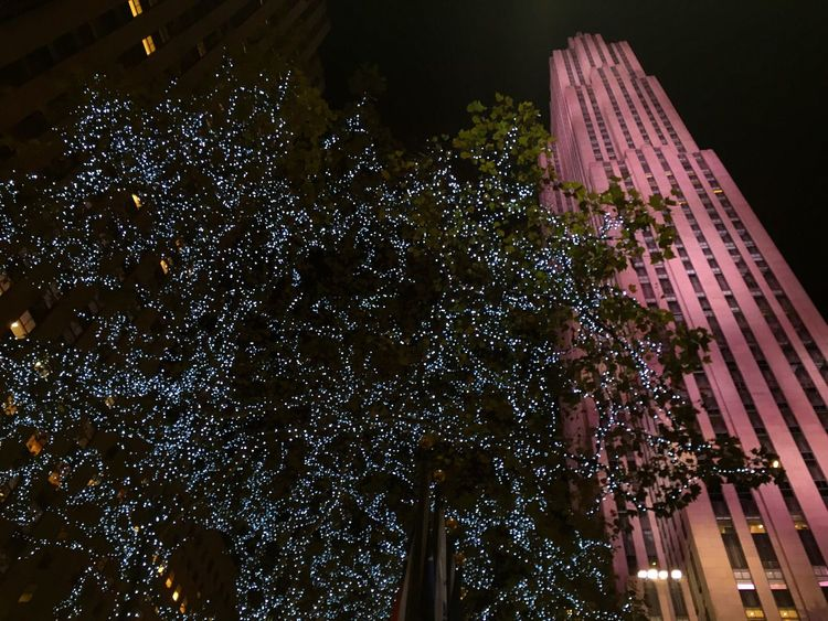 Enjoying The View Christmas Lights Newyork Christmas2015 Christmasevent Rockerfeller Rockerfellercenter NYC NYC Photography Street Photography Streetphotography Taking Photo Taking Photos EyeEm Best Shots Takingphotos Taking Pictures New York City The Best Of New York Newyorkcity Capture The Moment Nightphotography Eye4photography  Night Lights Lookingup The Places I've Been Today