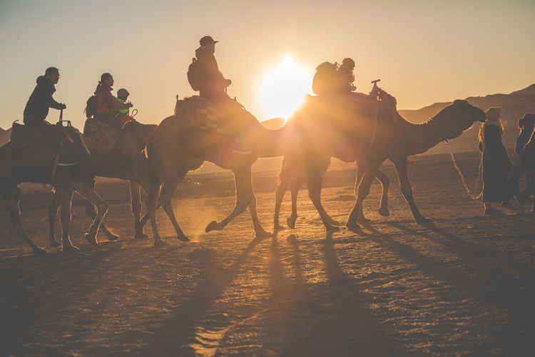 Group of people riding on land against sky during sunset