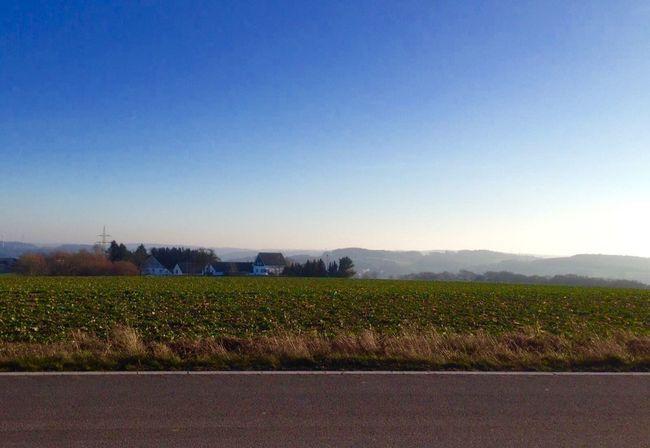 Silence Silence Clear Sky Field Agriculture Copy Space Blue Farm No People