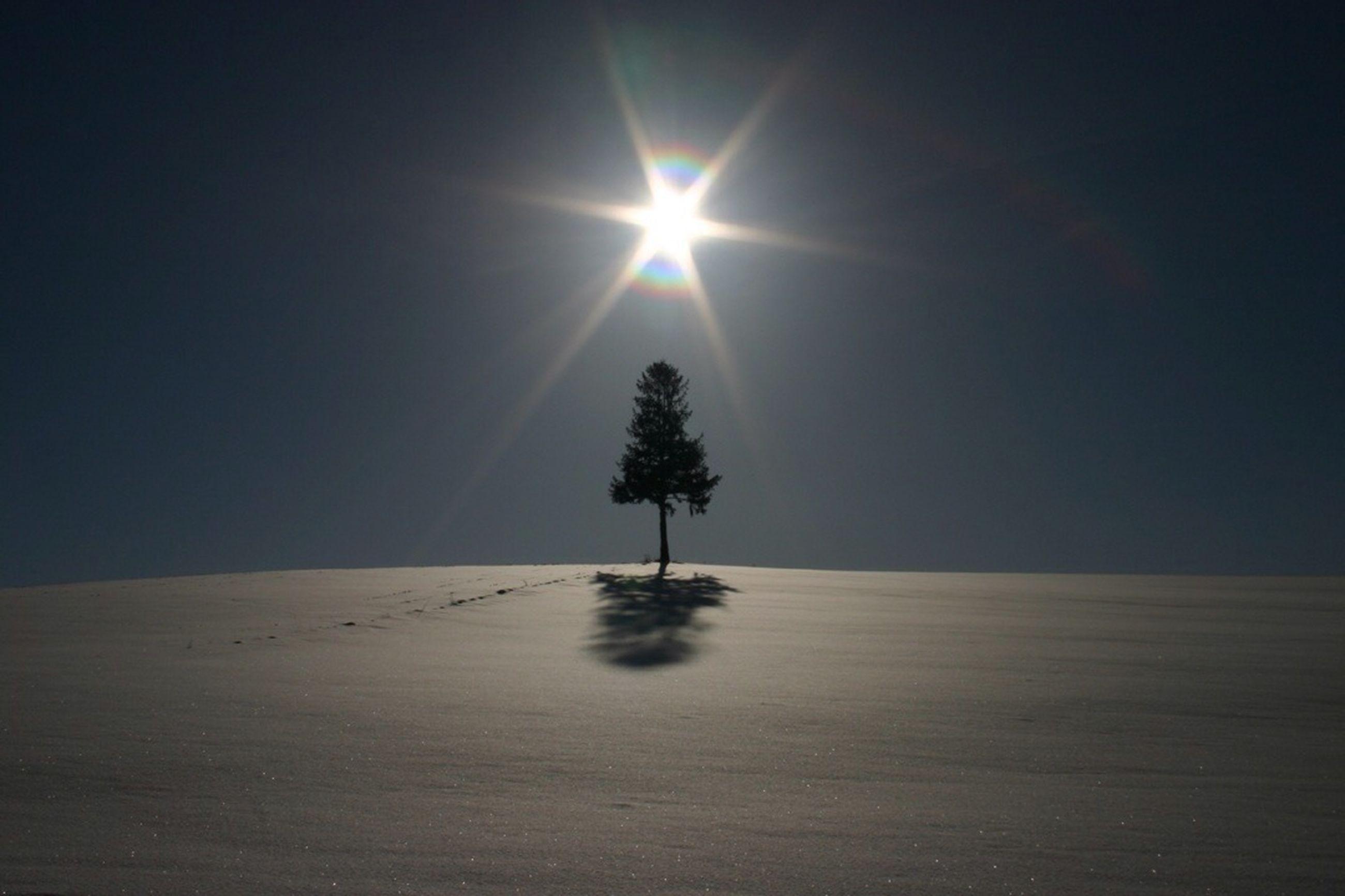 sun, snow, tranquility, tranquil scene, winter, cold temperature, sunbeam, sunlight, scenics, beauty in nature, nature, clear sky, lens flare, silhouette, landscape, season, bright, tree, idyllic, copy space